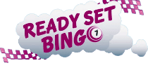Ready Set Bingo Review