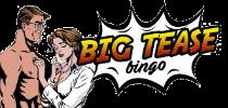 Big Tease Bingo Review