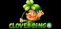 Clover Bingo Review