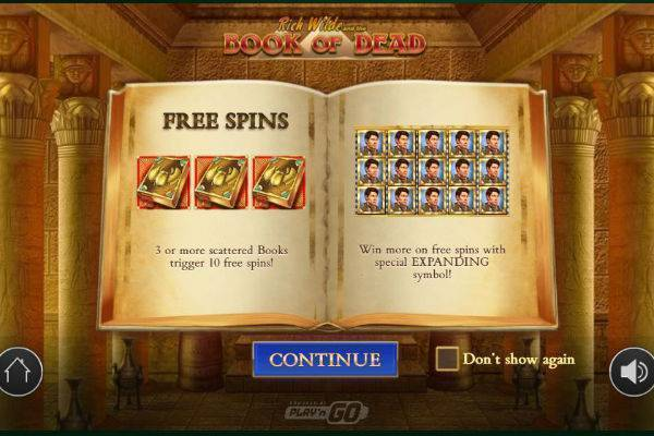 Book of Dead Online Slot Play'N Go