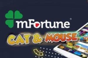 Cat & Mouse Slot mFortune