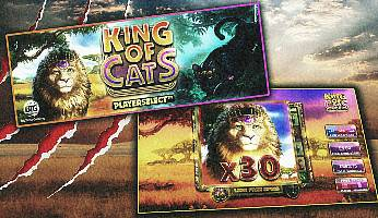 King of Cats Slot Goes Live